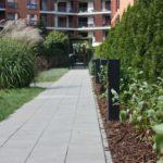 Projektowanie_ogrodów_Miejskie_Ziele