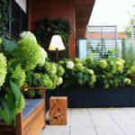 Projektowanie_tarasów Miejskie_ziele 05