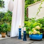 błękitne lampiony w ogrodzie, ogród egzotyvzny