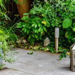 lampiony w ogrodzie, posążek buddy, zieleń